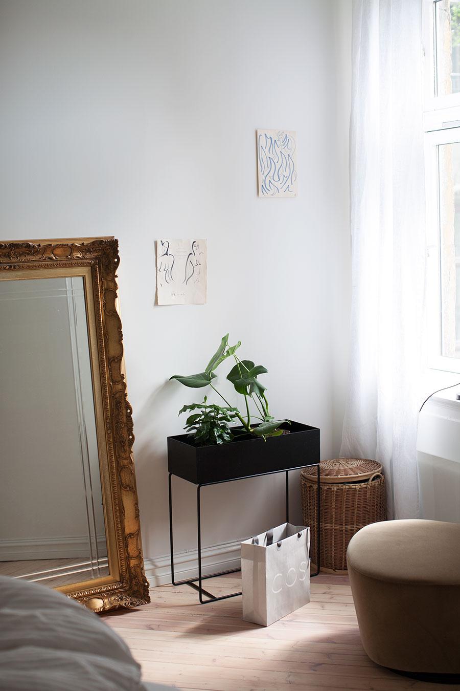 Soldøsig med ny stil Maja HattvangMaja Hattvang